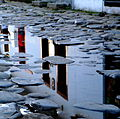 Reflexos em Paraty.JPG