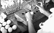 Researcher injecting smallpox into chicken eggs--Bangledesh.jpg
