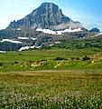 Reynolds Mountain at Logan Pass.jpg