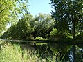 Rhine Rhone canal near Illkirch - panoramio.jpg