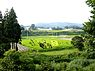 Rice Paddy Field Art in Yonezawa 2012 (7660880218).jpg