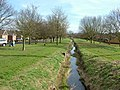 River Linnet, Bury St. Edmunds - geograph.org.uk - 1181789.jpg