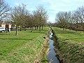 River Linnet, Bury St. Edmunds - geograph.org.uk - 1181789.jpg