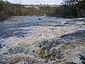 River Swale - geograph.org.uk - 1690986.jpg