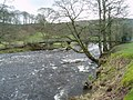 River Wharfe in spate, Bolton Abbey, Yorkshire - geograph.org.uk - 146149.jpg