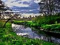 River memories - panoramio.jpg