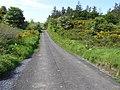 Road at Lowertown - geograph.org.uk - 1331049.jpg
