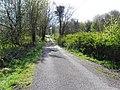 Road at Mackan (geograph 2915438).jpg