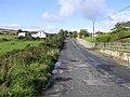 Road at Muntertinny - geograph.org.uk - 999571.jpg