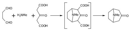 Tropinone synthesis