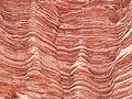 Rock Layers in Cliff near Banda Florida in Argentina.jpg