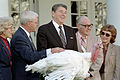 Ronald Reagan, turkey pardon.jpg