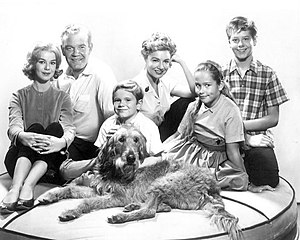 "Tim Rooney - Back, L-R: Ahna Capri, Andrew Duggan, Peggy McCay, Tim Rooney. Front: Ronnie Dapo, Carol Nicholson and ""Tramp"". From the TV series Room for One More (1962)"