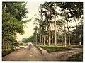 Royal Military College, a favorite drive, Sandhurst, Camberley, England-LCCN2002696440.jpg