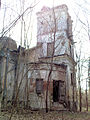 Ruiny Dworu w Bartodziejach - 03.jpg