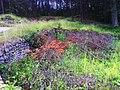 Ruiny młyna - panoramio (2).jpg