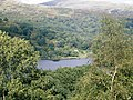 Rydal Water - geograph.org.uk - 946976.jpg