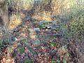 Rzędziny ruiny dworu.jpg