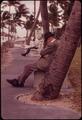 SIESTA AT SOUTH BEACH - NARA - 548645.tif