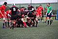 ST vs LOU espoirs 2013 (42).JPG