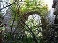 Saint-Front-la-Rivière ruines la Renaudie (33).JPG