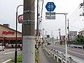 Saitama-kendo 49 Osato.jpg