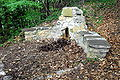 Sankt Paul Oelbruendl 10052008 91.jpg