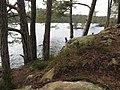 Scene fra Småvatnet - panoramio.jpg