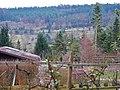 Schrebergärten bei Merklingen - panoramio.jpg