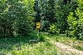 Sciklieva reserve (Belarus, June 2020) 03.jpg
