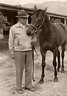 Tom Smith (horse trainer)