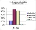 Sectores de actividad de establecimientos.png