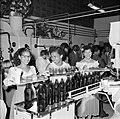 Serveersters in de Surinaamse Brouwerij N.V. bij de opening, Bestanddeelnr 252-4311.jpg