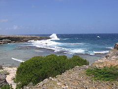 Shore waves Curacao.jpg