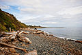 Shoreline, Beacon Hill Park - 2970423713.jpg
