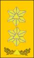 Sivilforsvaret-Distinksjon-Sjef i DSB.png
