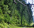 Sommerrodelbahn in Enzklösterle - panoramio.jpg