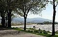 Spargelfeld in Bad Krozingen-Biengen mit Blauen 5.jpg