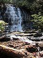 Spoonauger Falls - panoramio.jpg