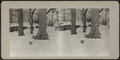 Squirrels in Central Park snow, from Robert N. Dennis collection of stereoscopic views.png