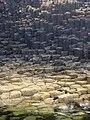 Staffa-basalt.jpg