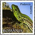 Stamps of Romania, 2011-02.jpg
