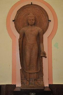 Standing Buddha Curved or Installed by Buddist Monk Yasadinna - Circa 5th Century CE - Jamalpur Mound - ACCN 00-A-5 - Government Museum - Mathura 2013-02-23 5546