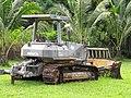 Starr-091104-8754-Cocos nucifera-habit with Komatsu tractor-Kaeleku Hana-Maui (24988002205).jpg