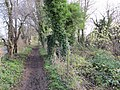 Start of the towpath - geograph.org.uk - 1640465.jpg