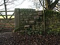 Stile, Chatsworth Park - geograph.org.uk - 1077576.jpg