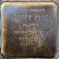 Photo of Günter Rosen brass plaque
