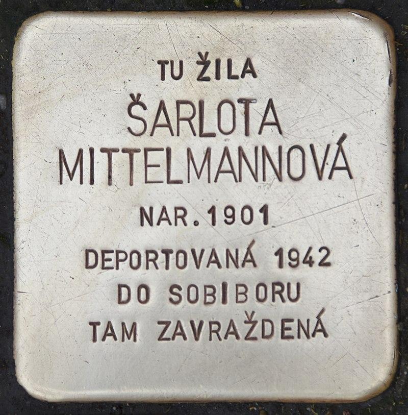 Stolperstein für Sarlota Mittelmannova.jpg