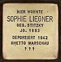 Stolperstein für Sophie Liegner (Cottbus).jpg