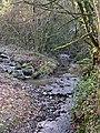 Stream near Blackwater - geograph.org.uk - 571433.jpg